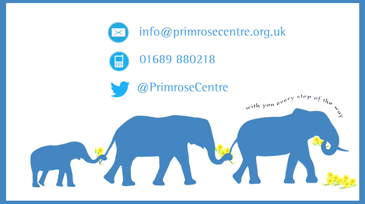 Primrose Centre - EDEN Film Productions